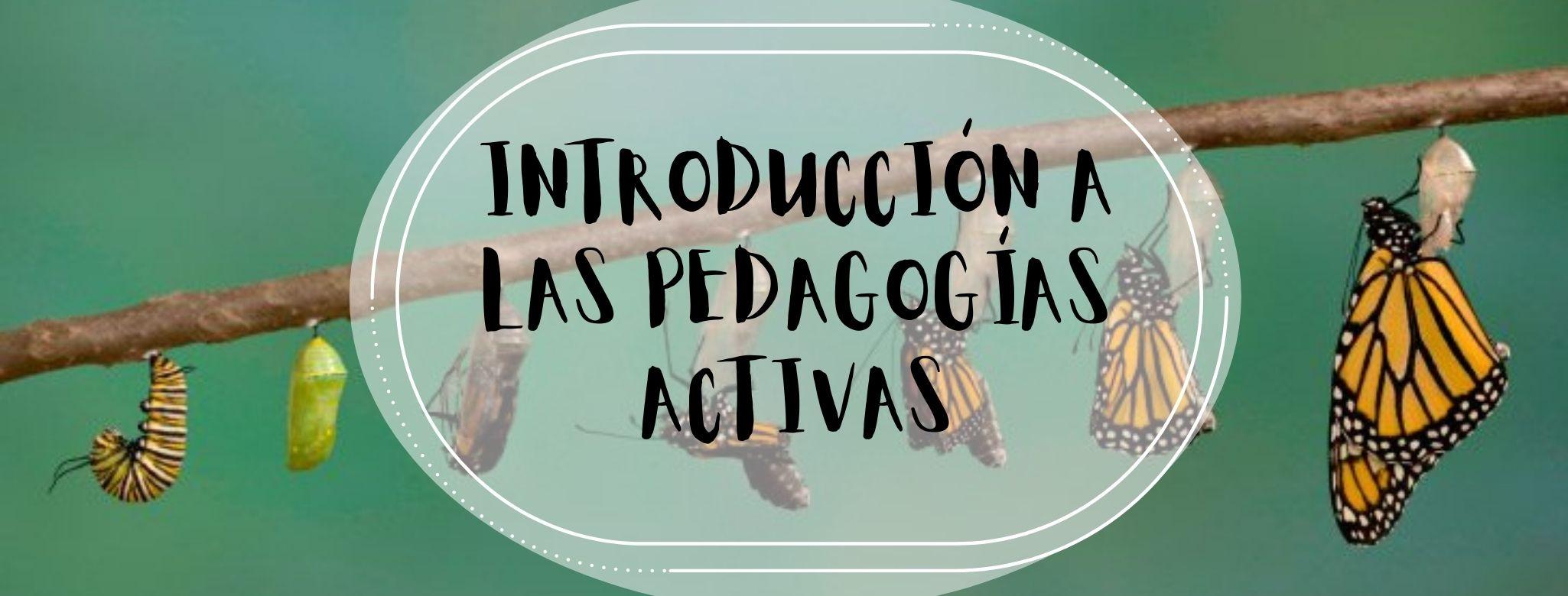 Introducción a las pedagogías activas y vivenciales